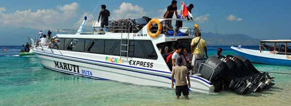 Pacha Express